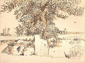 Винсент  ван Гог. Landscape with a Tree in the Foreground