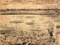Винсент  ван Гог  Marsh with Water Lillies