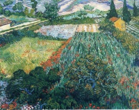 Винсент  ван Гог  Field with Poppies